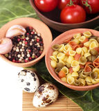 Italian raw pasta with tomatoes, quail eggs. And spices Stock Images