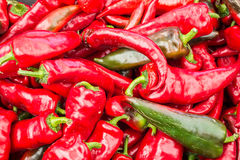 Italian Red Peppers Stock Image