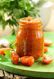 Italian red pesto of sun-dried tomatoes with garlic Stock Photography