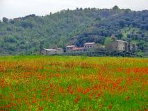 Italian farm with red poppies Royalty Free Stock Photos