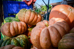 Italian ripe pumpkins. At the market in countryside Royalty Free Stock Image