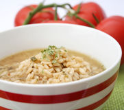 Italian risotto Royalty Free Stock Photo