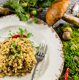 Italian risotto with mushrooms Stock Photos
