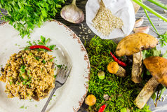 Italian risotto with mushrooms Stock Photography