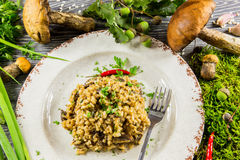 Italian risotto with mushrooms Royalty Free Stock Image