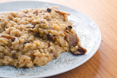 Italian Risotto with Porcini Mushrooms. A course of Italian Risotto with Porcini Mushrooms with parcely and grated parmiggiano cheese sprinkled on top, served on Royalty Free Stock Photo