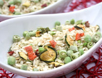 Italian risotto with vegetables Stock Photography