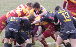 Italian Rugby Federation Cup Match Stock Images