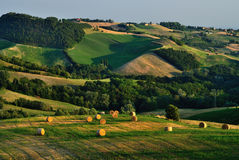 Italian rural countryside. Hay bales in rural countryside scene, Langhirano comune, Parma province, Emilia-Romagna region, Italy stock photos