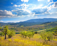 Italian rural landscape Stock Image