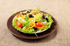 Italian salad Stock Image