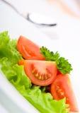 Italian Salad Royalty Free Stock Photos