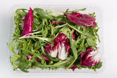 Italian Salad in box Royalty Free Stock Photo