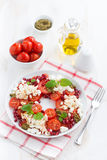 Italian salad with cherry tomatoes, cottage cheese, mint pesto Royalty Free Stock Image