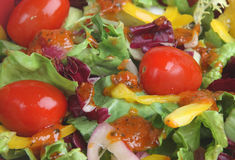 Italian Salad with Dressing. Italian salad with tomatoes and dressing Royalty Free Stock Photo