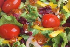 Italian Salad with Dressing Royalty Free Stock Photo