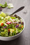Italian salad with freshly harvested organic vegetables Royalty Free Stock Images