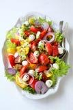 Italian salad on large plate Royalty Free Stock Photos