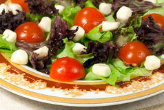 Italian salad with mozzarella Royalty Free Stock Photography