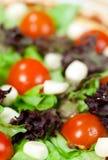 Italian salad with mozzarella stock image
