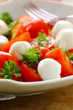 Italian salad with tomatoes and mozzarella Royalty Free Stock Photos