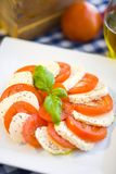 Italian salad with tomatos and mozarella cheese Royalty Free Stock Photos