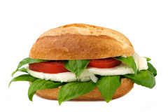 Italian sandwich with fresh buffalo mozzarella Stock Photo