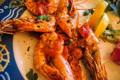 Italian scampi alla griglia on plate Royalty Free Stock Photo