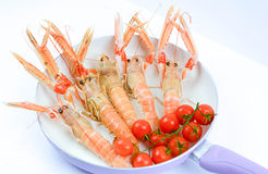 Italian scampi. Scampi italian and mediterranean shellfishes Stock Images