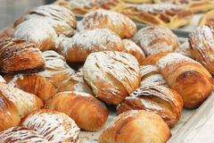 Italian Sfogliatelle Pastry Royalty Free Stock Photos