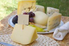 Italian sheep milk cheese- primo sale Stock Photography