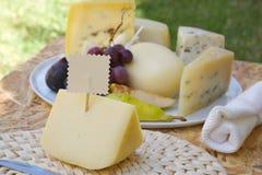 Italian sheep milk cheese- primo sale Stock Photography