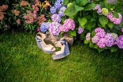 Italian shoes, elegant sandals. In the garden Stock Photos