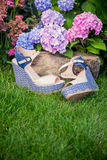 Italian shoes, elegant sandals in the garden. A Stock Photography