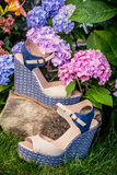 Italian shoes, elegant sandals in the garden. A Royalty Free Stock Photos