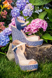 Italian shoes, elegant sandals in the garden. A Stock Image