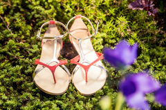 Italian shoes, stylish sandals lie on the grass. A Stock Photo