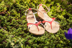 Italian shoes, stylish sandals lie on the grass. A Royalty Free Stock Photography