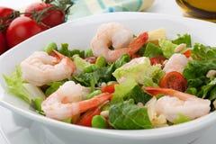 Italian Shrimp Salad Stock Images