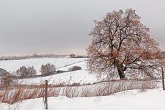 Italian snowy landscape Stock Photos