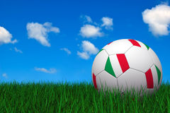 Italian soccer ball Stock Images