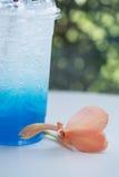 Italian soda and canna lily flower. Royalty Free Stock Photo