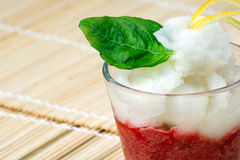 Italian Sorbet Royalty Free Stock Photography