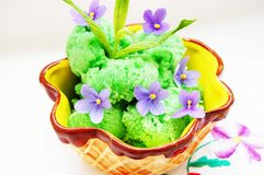 Italian sorbet with mint Stock Photography