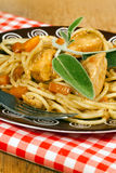 Italian Spaghetti with chicken Royalty Free Stock Photo