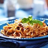 Italian spaghetti dish Stock Images