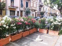 Italian street flowers. Italian street with oleander Stock Images