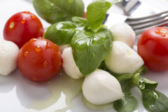 Italian style mozzarella, salad and basil Royalty Free Stock Image