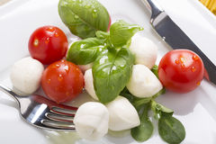 Italian style mozzarella, salad and basil Stock Images