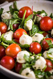 Italian style tomato and mozzarella salad in rustic bowl Royalty Free Stock Photo